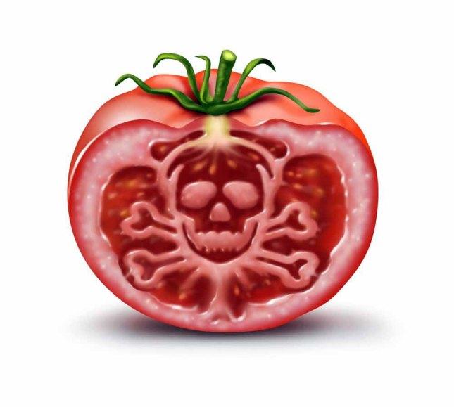 گوجه.jpg