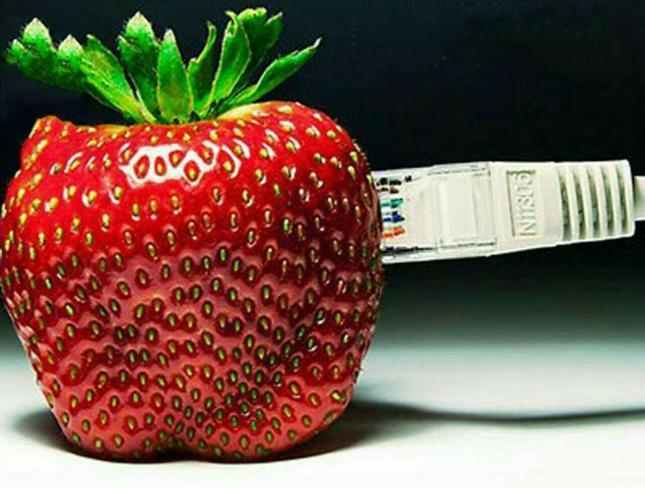 اینترنت.jpg