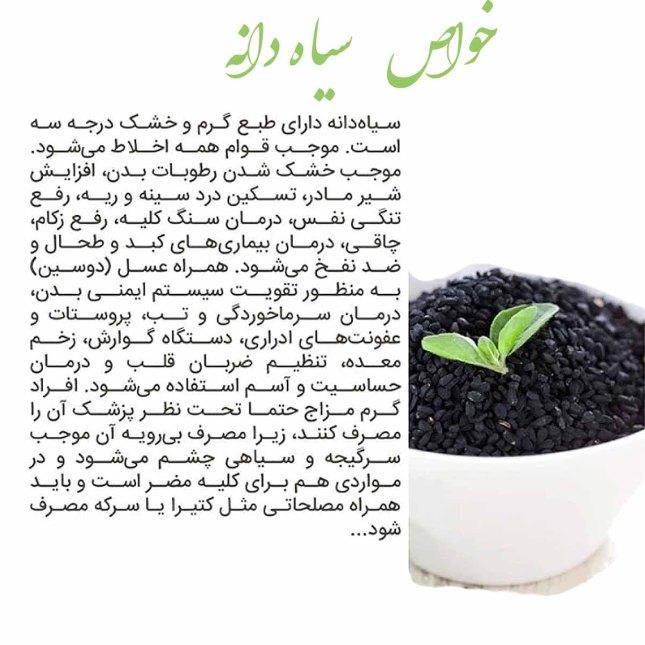 سیاه دانه.jpg