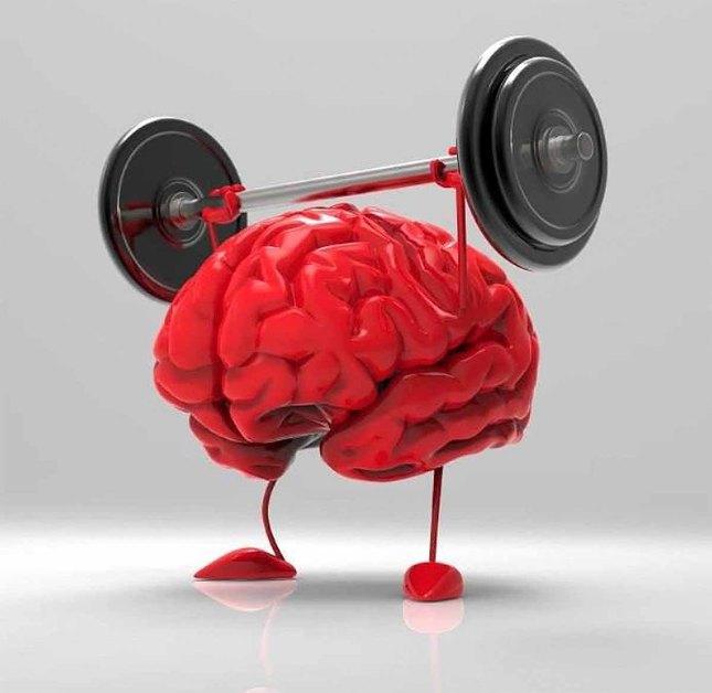 توانمندی مغز