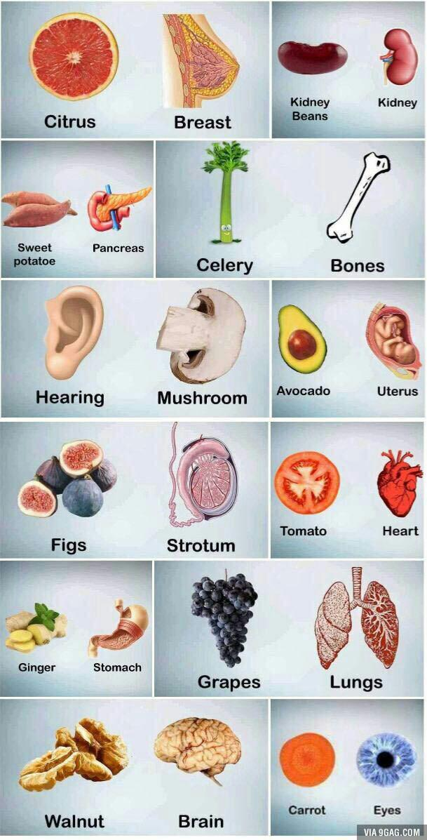 میوه بدن.jpg